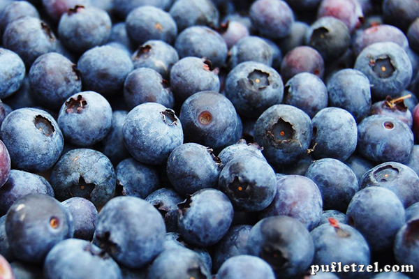 Bilberries - wonder fruits. Benefits and uses